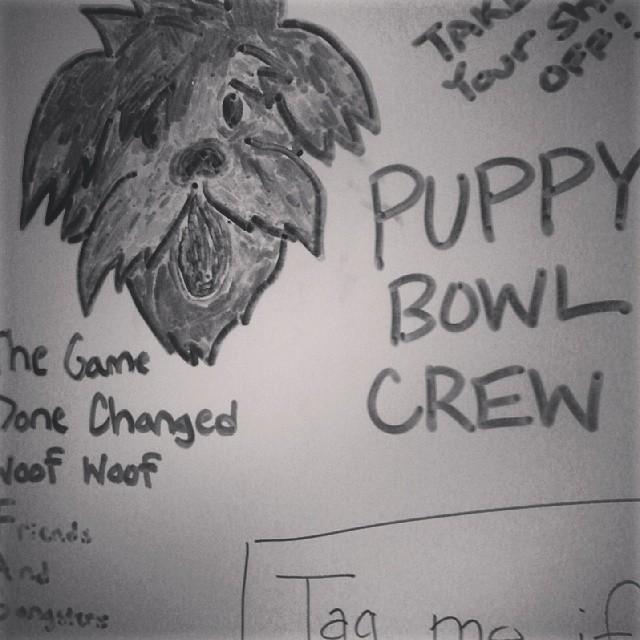 Puppy Bowl Crew